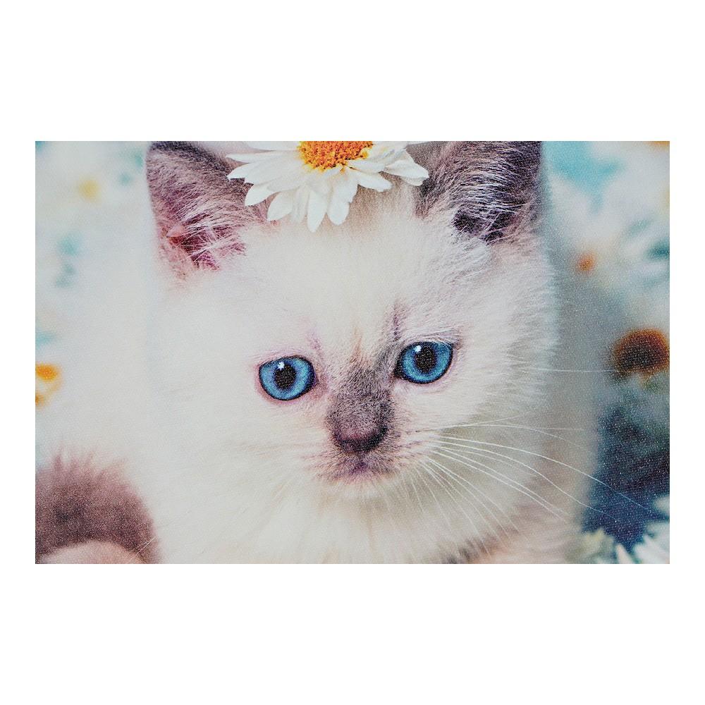 Schilderij DKD Home Decor Cats Canvas (4 pcs) (28 x 1.5 x 28 cm)