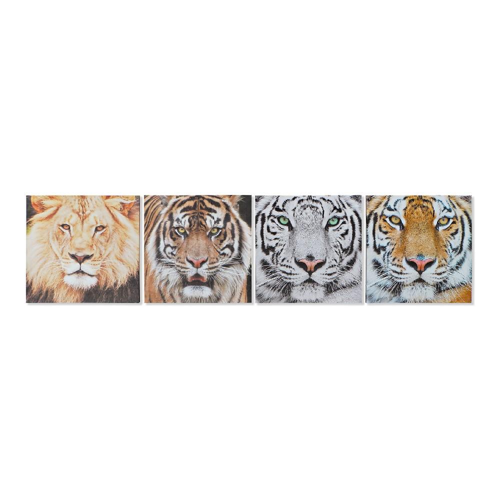 Lot de 4 toiles Felini 40x40cm Multicolore Grands félins